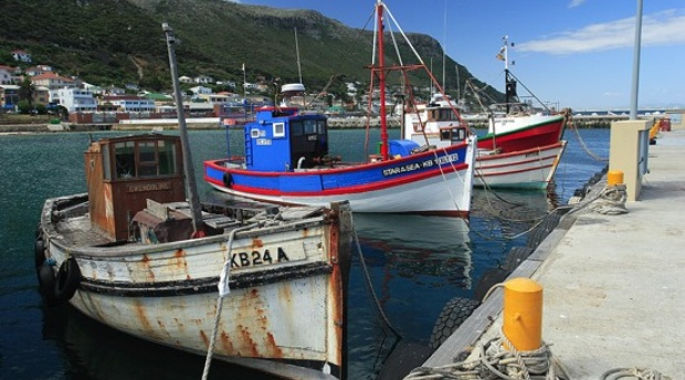 Fishing boats, cape town, by Banes. Support SASSI, sustainable fishing south africa