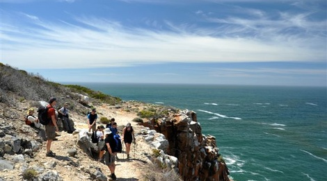 oystercatcher trail, south africa walking tours, guided tours south africa